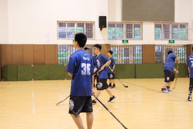 Summer Hockey Team Report